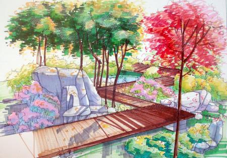 环艺学生树木手绘